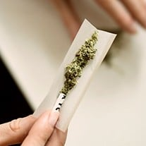 Rolling the perfect joint
