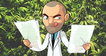 marijuana grow journals