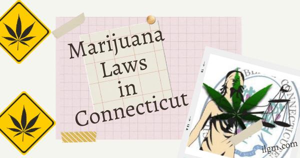 Marijuana Laws in Connecticut