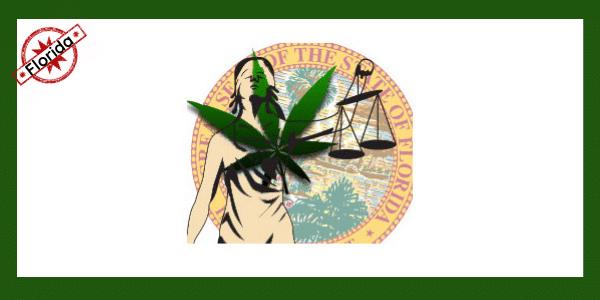 marijuana laws florida
