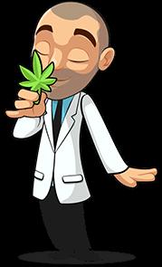 Marijuana Usage