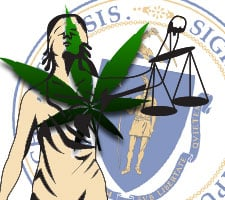 Massachusetts votes cannabis laws november 2016