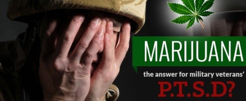 medical strain for mitigating the symptoms of PTSD