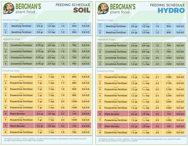 Cannabis Feeding Schedules
