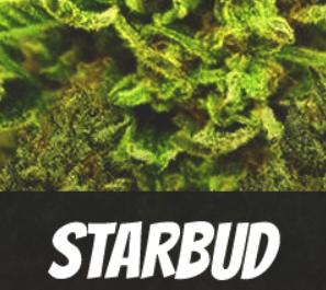 Starbud Strain