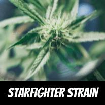 starfighter-strain