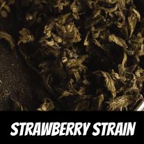 Strawberry Strain