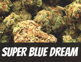 Super Blue Dream
