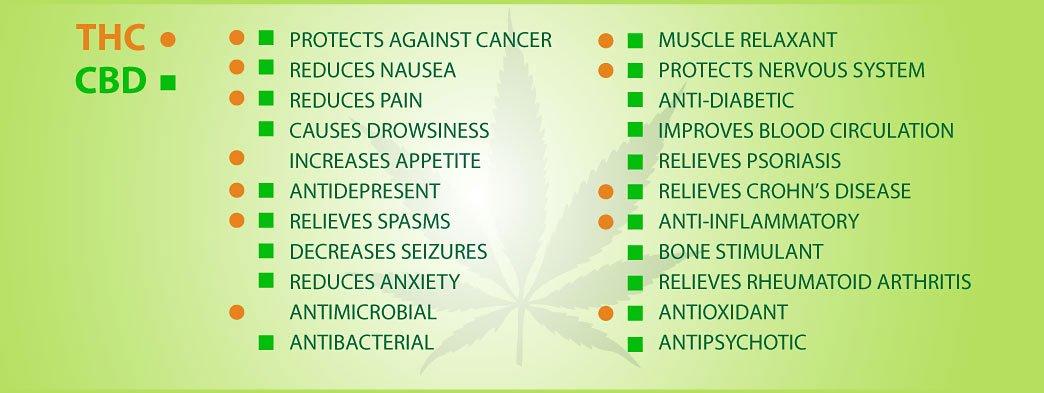 qualities of cannabis