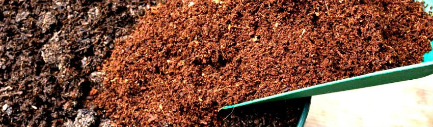 try coco coir to make your grow more green