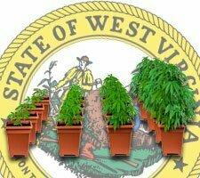 growing marijuana in west virginia