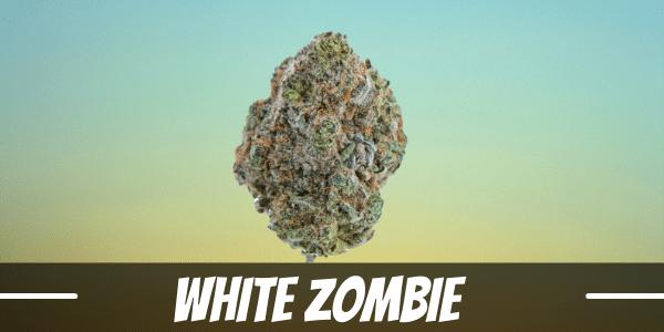 white-zombie