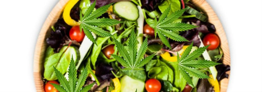 why you should be eating raw weed