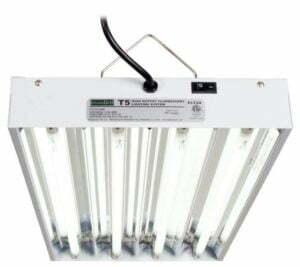 Cheap envigro t5 grow light
