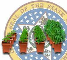 Tennessee indoor marijuana growing