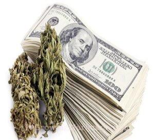 Marijuana taxes fines oklahoma