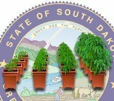 grow weed south dakota