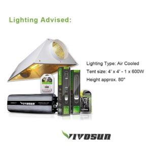 Lightning Advise