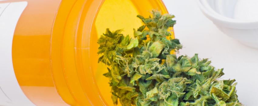 Medical Marijuana for Pancreatic Cancer
