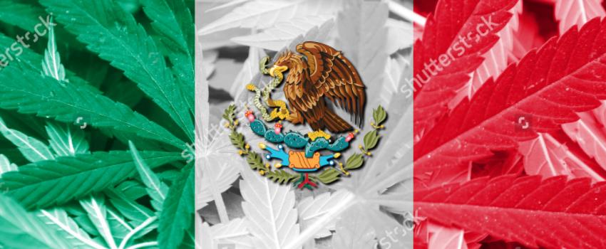 Mexico_Flag_with_Marijuana
