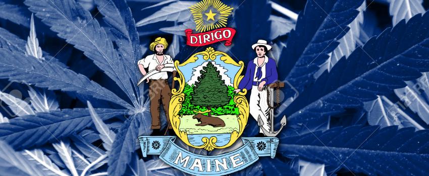 Maine_Flag_with_Marijuana