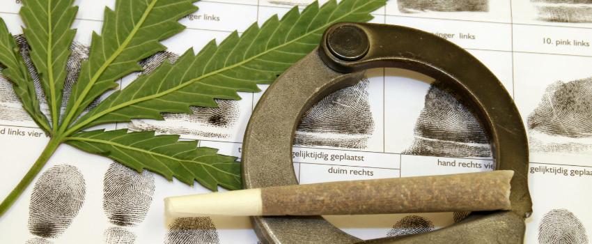 Breaking Marijuana
