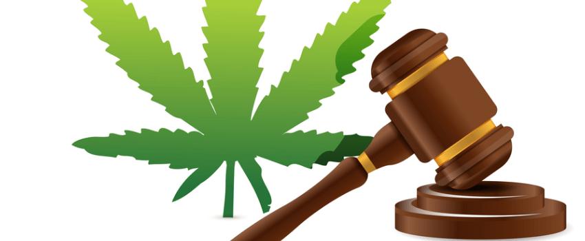 Breaking the Marijuana