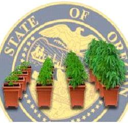 History of growing marijuana in Oregon