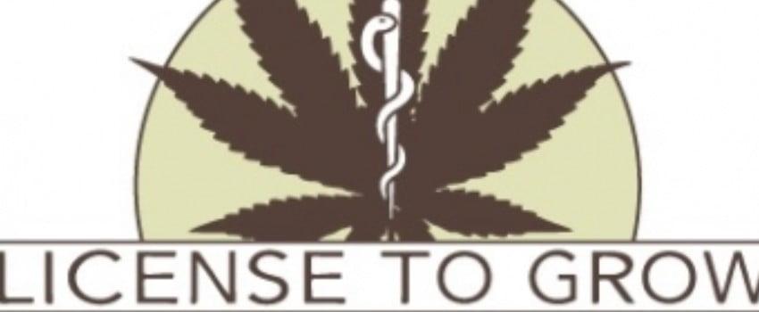 Marijuana Growing Licenses