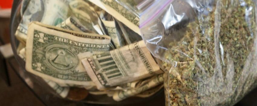 Profits of the cannabis industry in North Dakota