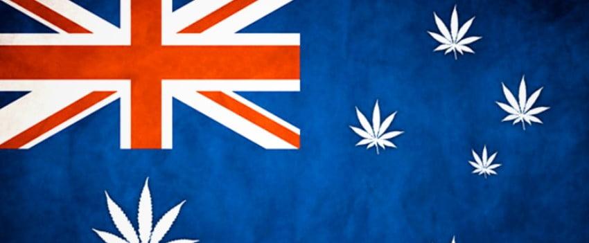 Hemp, Banks and Colonizing Australia