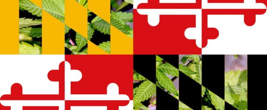 Maryland Marijuana
