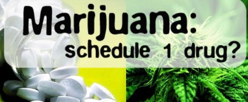 Schedule 1 Drug