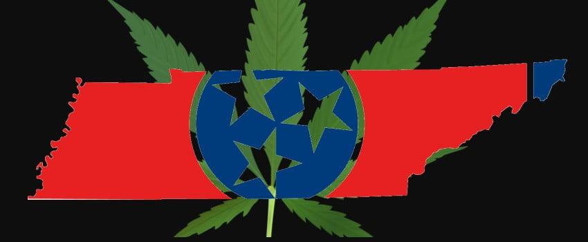 Tennessee Flag with Marijuana