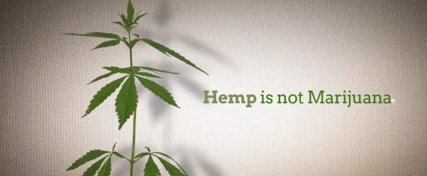 Hemp is not Marijuana