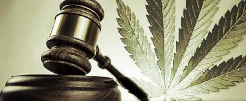 St. Louis, Missouri Marijuana Policy