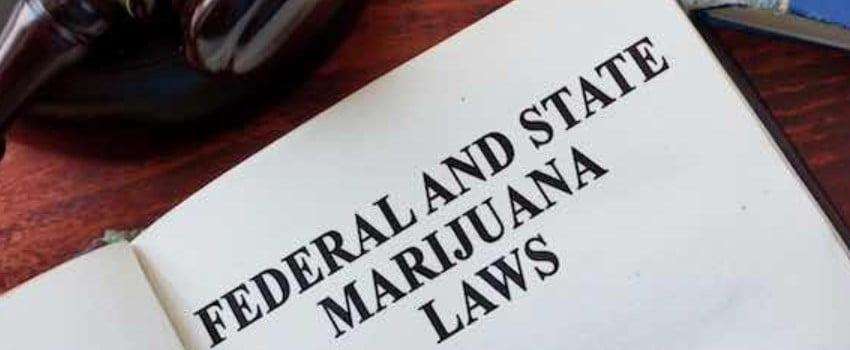 The Court Declares MMJ Compensation a Federal Crime