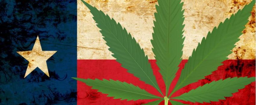 Local Lawmakers Despise Cannabis
