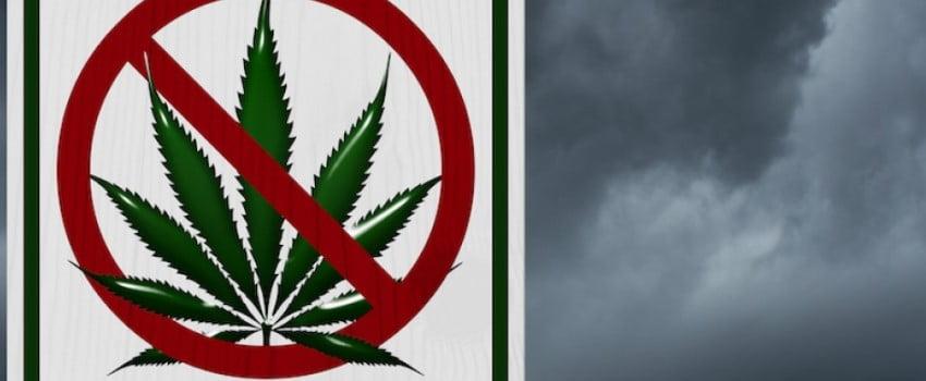 Kids The Major Reason for Opposing Marijuana Legalization