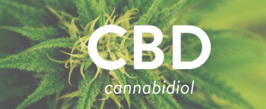 Study of CBD